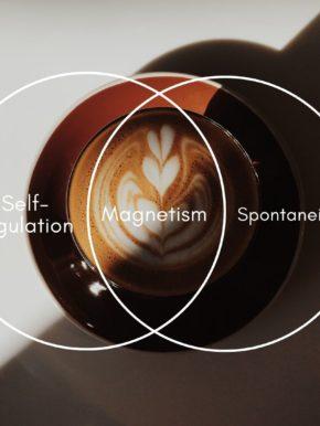 SPONTANEITY & MAGNETISM